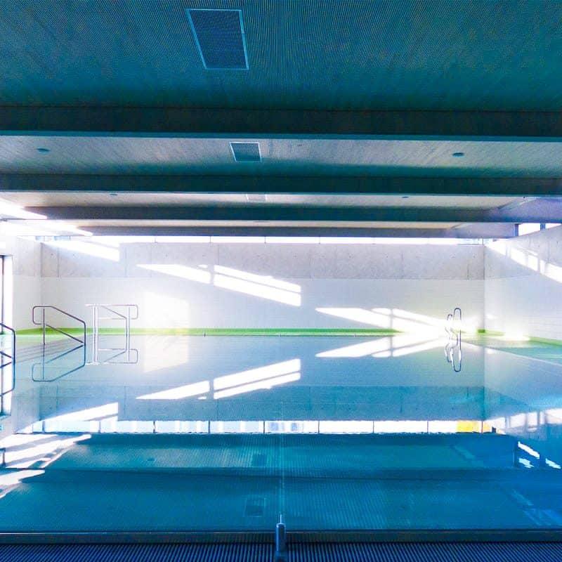 Schwimmen lernen in Frankfurt Dornbusch