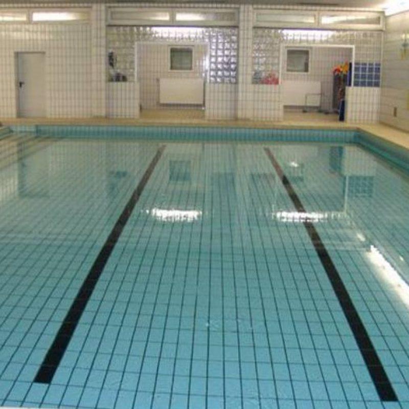 Karl-Treutel-Schule Kelsterbach Schwimmschule Marlin